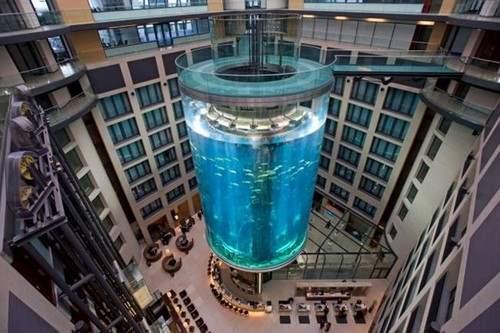thang máy độc đáo aquadom