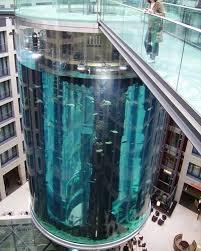 Thang máy xuyên qua bể cá
