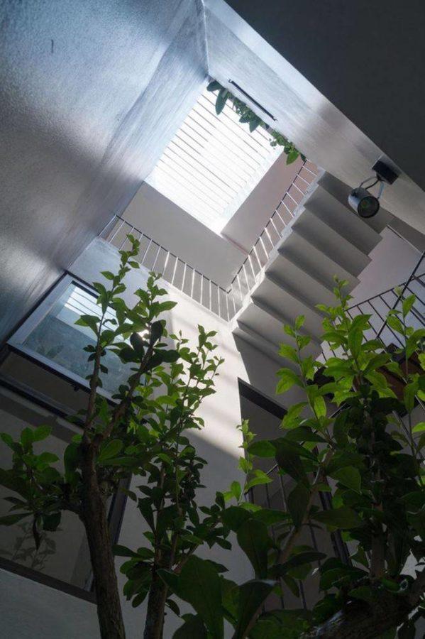 Giếng trời lắp thang máy cho gia đình